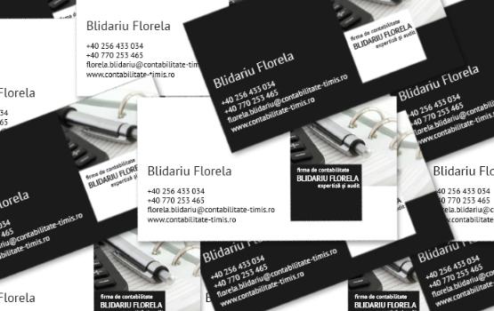 contabilitate-timisoara-blidariu-florela